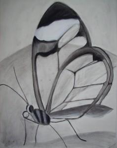 Houtskool, vlinder